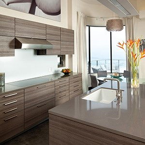 Devon - Quartz countertops - San Jose
