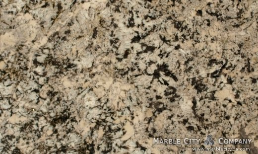 White Argento - Granite Countertops Bay Area, California. Close up view — Close Up View