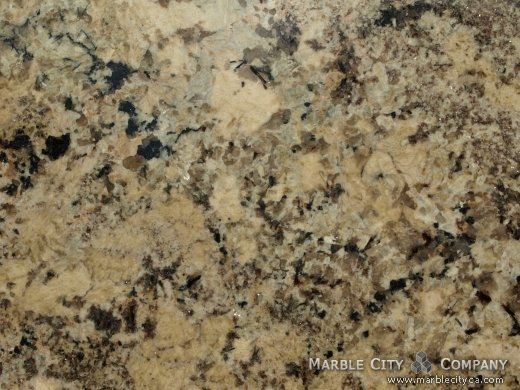 Absolute Cream - Granite Countertops Bay Area, California. Macro view — Macro View