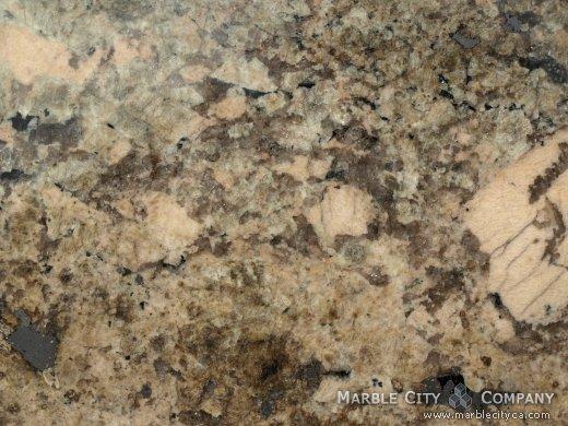 Crema Bordeaux - Granite Countertops San Jose, California. Macro view — Macro View