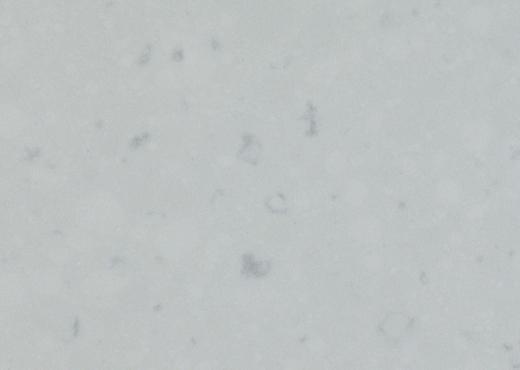 Misty Carrera - Caesarstone Quartz Countertops Bay Area, California. Slab view — Slab View