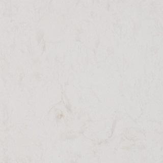 Glacier White - MSI Quartz Countertops San Jose, California. Slab view — Slab View